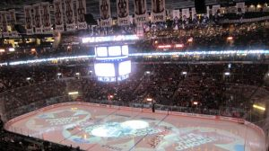 Maple Leafs Hockey